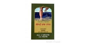 Sayahto Baba Nanak (Punjabi: ਸਯਾਹਤੋ ਬਾਬਾ ਨਾਨਕ - ਅਰਬ-ਈਰਾਨ ਦੀ ਫੇਰੀ ਬਾਰੇ - ਸ਼ਾਹ ਫ਼ਕੀਰ ਔਰੰਗਾਬਾਦੀ)